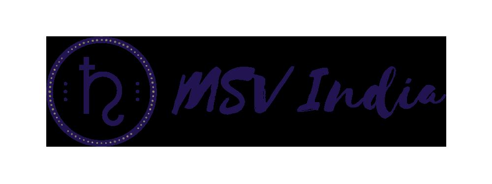 MSV India Inc